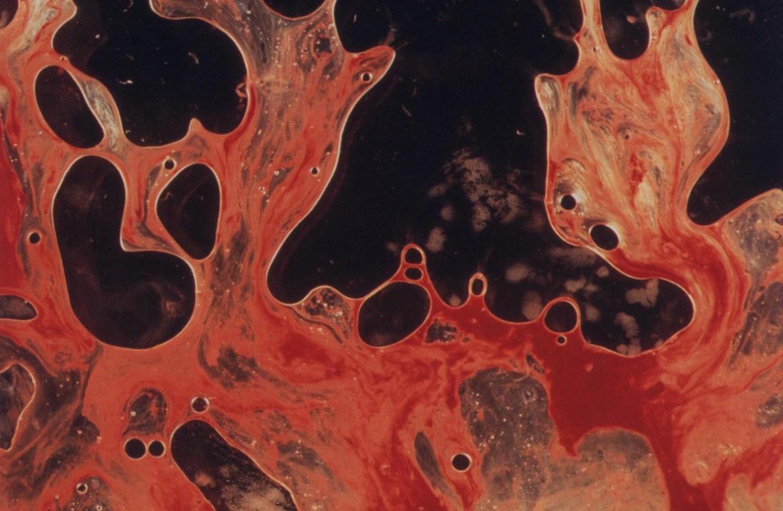 Sangre en la boca 2016 eva de dominici - 2 part 6