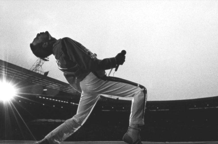 Freddie Mercury Wallpaper 5 Diablorockcom